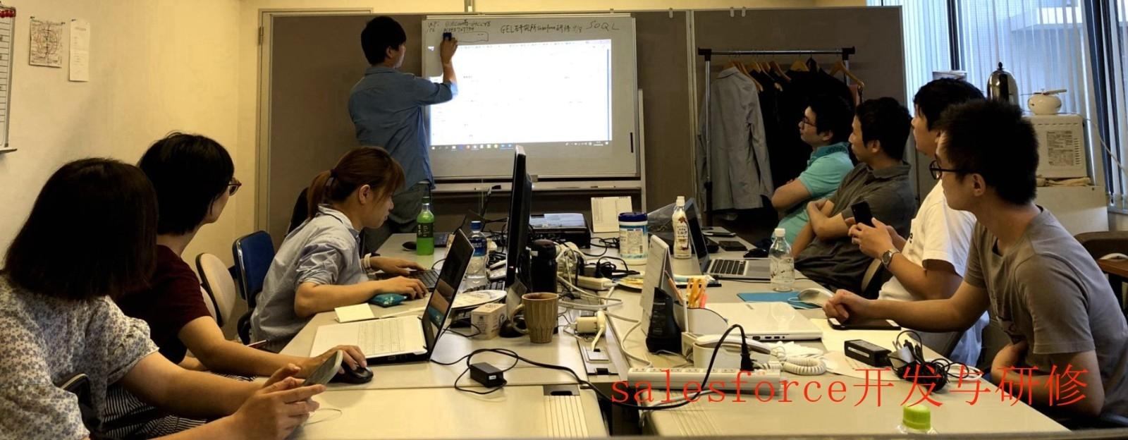 salesforce开发与研修.jpg